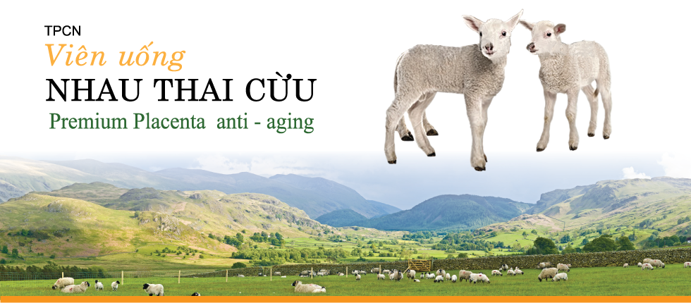 vien-uong-nhau-thai-cuu-uc- australiancare-tri-nam